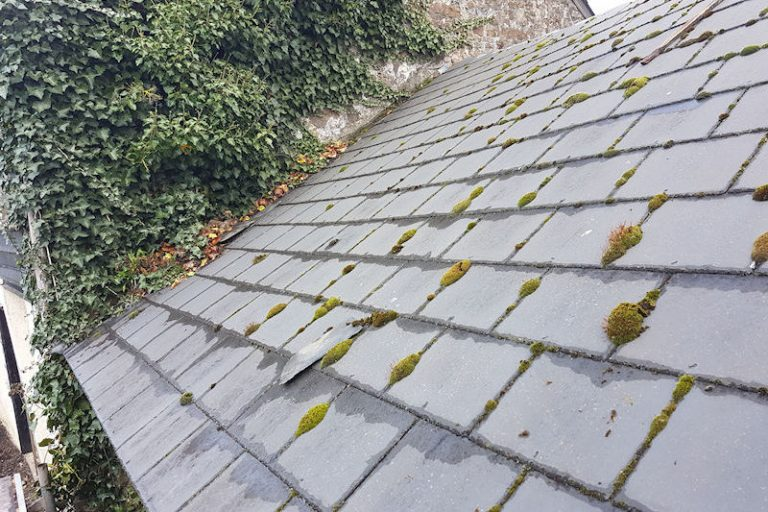 Millington barn roof before